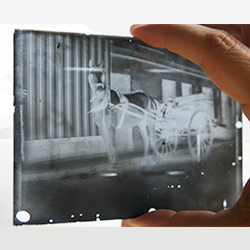 Glass Plate Negatives Thumbnail